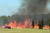 Лесная зона Севастопольского района будет закрыта для туристов в связи с пожароопасным периодом