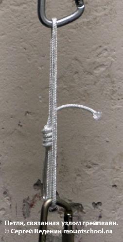 Петля, завязанная узлом грейпвайн