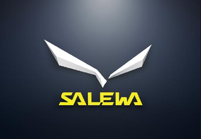 Новый логотип компании Salewa (вариация в 3D)