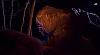 Ночной Париж - новая увлекательная реальность для боулдеринга