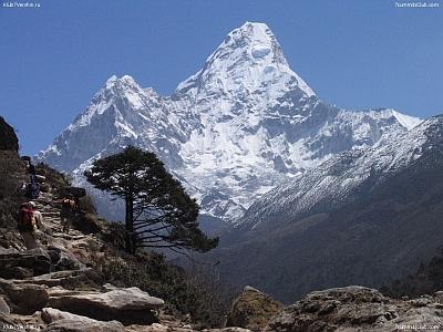 Азербайджанский альпинист Мурад Ашурлы пропал безвести в Гималаях при спуске с вершины Ама Даблам