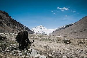 В поисках волшебства: у подножья Эвереста (+ФОТО)