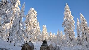 Деревня Оймякон, что в Якутии, известна как один из «полюсов холода». По ряду параметров Оймяконская долина — самое суровое место на Земле, где проживает постоянное население. 26 января 1926 года здесь была зафиксирована температура −71.2 градуса.