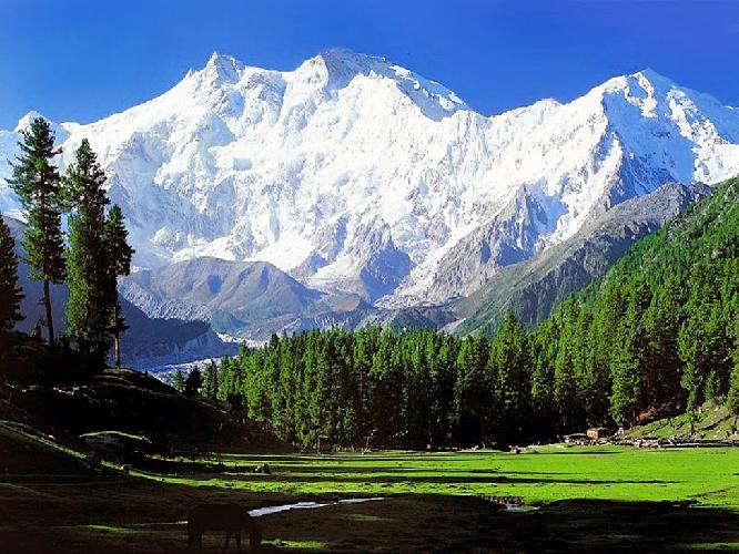 Нангапарбат (Nanga Parbat, 8125 м)