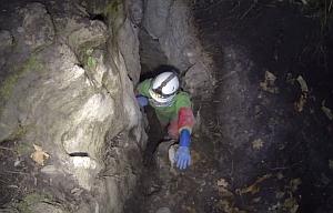 Новая пещера в Ивано-Франковской области возле хутора Думка
