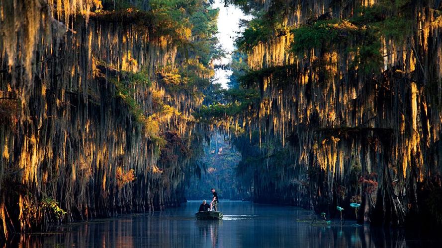 Два человека пробираются сквозь коридор из кипарисов на рассвете на озере Каддо неподалеку от границ Техаса и Луизианы, США. (Фото: Майкл Хэнсон)
