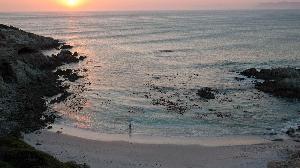 Южноафриканский Гансабай знаменит одной из самых больших популяций больших белых акул. Хотя уже лет 20 назад это явление превратили в туристический аттракцион — дайвинг с акулами, — оказаться в местных открытых водах для неподготовленного человека будет довольно рискованным занятием.