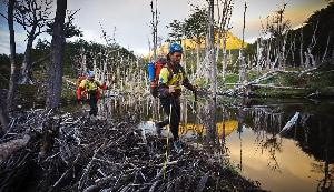 «Экспедиция в Патагонию» длится 7 дней, причем каждый раз расстояние в 600 километров пролегает по новому маршруту, так что знать местность ни у кого из участников не получается по определению. Команды из 4 человек пересекают Южную Патагонию (часть Южной Америки, расположенная к югу от рек Рио-Колорадо в Аргентине и Био-Био в Чили) пешком, на велосипедах и на каяках.