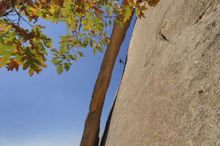 MOUNTAIN CLIMBING. 25th MARIA LUISA MEMORIAL