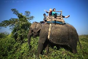 На слоне по джунглям национального парк Читван, Непал (Амелии 4 года)