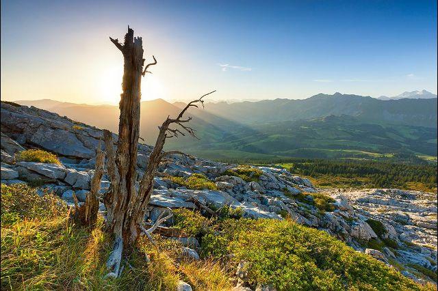 На границе кантонов Берн и Люцерн, на высоте примерно 2 тыс. метров над уровнем моря находится карстовый регион Шраттенфлю (Schrattenfluh / Schrattenflue). Добравшимся сюда туристы могут полюбоваться на незабываемые горные панорамы. Фотографии: Андреас Герт / Andreas Gerth