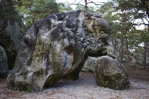 Фонтенбло (Fontainebleau)