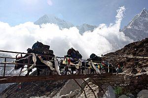 Непал будет следить за туристами с помощью SIM-карт