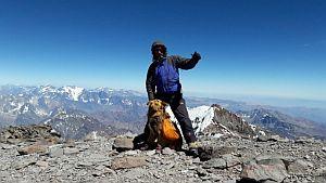 Впервые на вершину высочайшей горы Южной Америки поднялся альпинист - инвалид с собакой поводырем