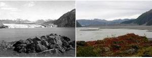 Ледник Кэрролл, Аляска. Август 1906 г. — сентябрь 2003 г.