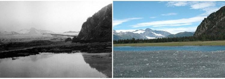 Ледник Медвежий, Аляска, июль 1909 – август 2005