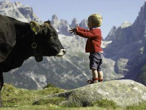 Дети в горах: некоторые советы организации горных походов