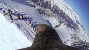 Монблан со спины орла