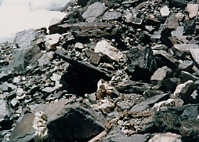 останки Мориса Уилсона (Maurice Wilson) на Эвересте