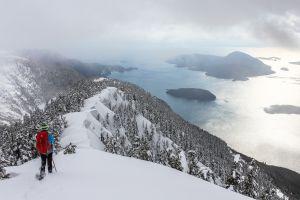 Пять туристов из Южной Кореи погибли под лавиной в Канаде