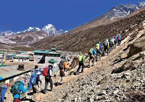 Рекордное количество альпинистов поднимутся в этом году на вершину Эвереста