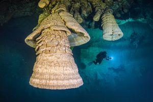 Фото дня: «Адские колокола» в подводной пещере