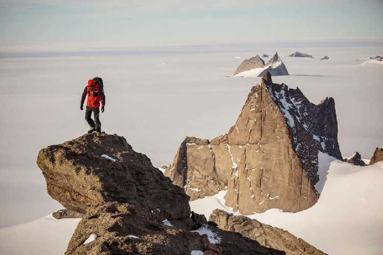 Алекс Хоннольд (Alex Honnold) на горе Пингвин (Mount Penguin). Фото nationalgeographic.com
