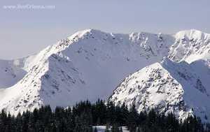 В Карпатах при восхождении на гору Поп-Иван Мармарошский со снежного карниза сорвалась туристка (ОБНОВЛЯЕТСЯ)