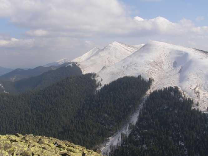 Лавинозбирний желоб на северо-западном склоне г. Медведик (Горганы). Фото skelya . net