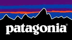 Всемирно известная компания Patagonia инвестирует 10 миллионов долларов на решение экологических проблем