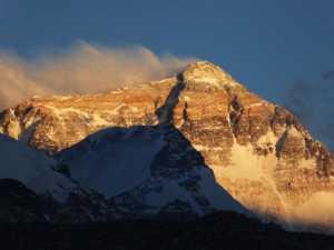 На Эвересте учёные обнаружили 3 новых вида растений