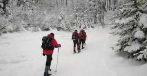 На горе Гемба в Карпатах снова пропал турист