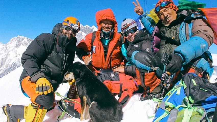 На вершине Барунцзе группа Варговского с собакой Мера. Фото Don Wargowsky