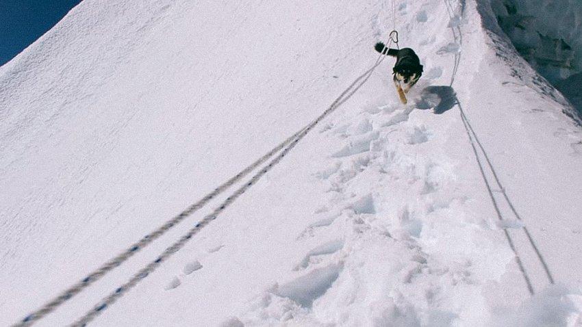 Восхождение на Барунцзе собаки по кличке Мера. Фото Don Wargowsky