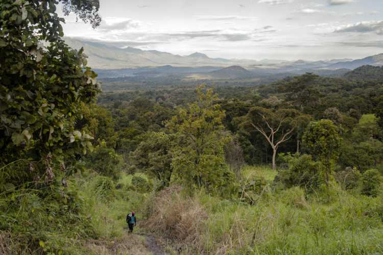 Гора Кинети (Mount Kinyeti). Фото Marco Di Lauro