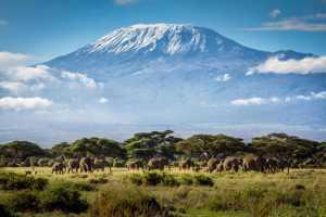 На высочайшую вершину Африки гору Килиманджаро планируют провести канатную дорогу