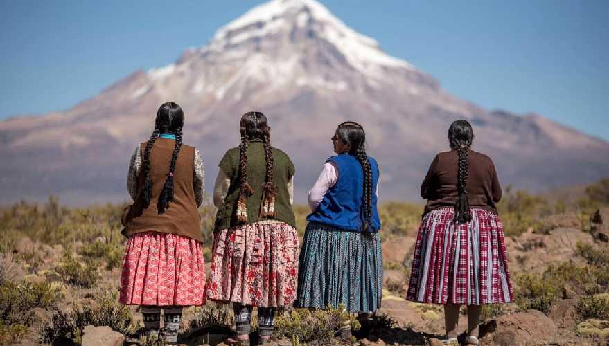 Чолитас (Cholitas)