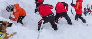 Пять туристов погибли в Австрии при сходе лавины