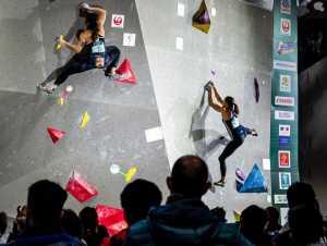 Крайний срок проведения континентальных чемпионатов по скалолазанию - 30 июня