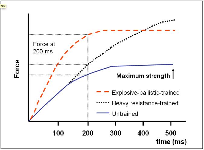 График зависимости силы RFD от времени для не тренированного человека,  человека, который тренируется регулярно и для скоростного (баллистического) тренинга