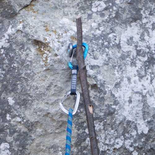 Натянутая верёвка жёстко держит оттяжку. Если рожки длинные — не получится. Фото Кирилл Белоцерковский