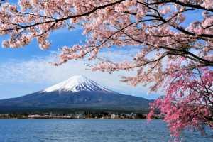Япония закрыла Фудзияму для альпинистов из-за коронавируса