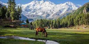Опасная игра: Пакистан планирует открыть свои границы для туристов