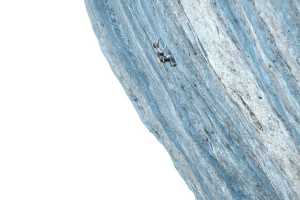 Якоб Шуберт пробует свои силы на сложнейшем в мире скалолазном маршруте