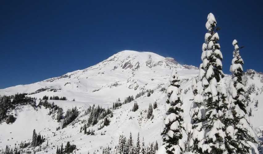 Южный склон горы Рейнир (Mount Rainier)