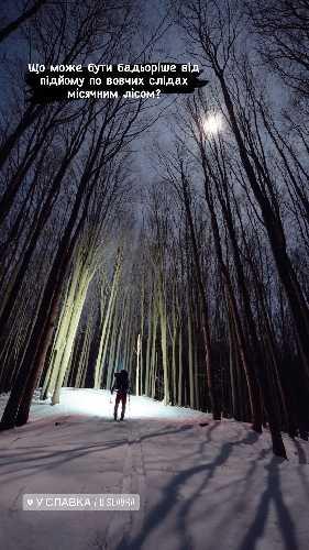 Підйом на гору Бозьова місячним лісом. Фото Ігор Магновський