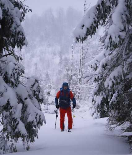 2 день Експедиції - вихід на Верховинський вододільний хребет. Фото Ігор Магновський