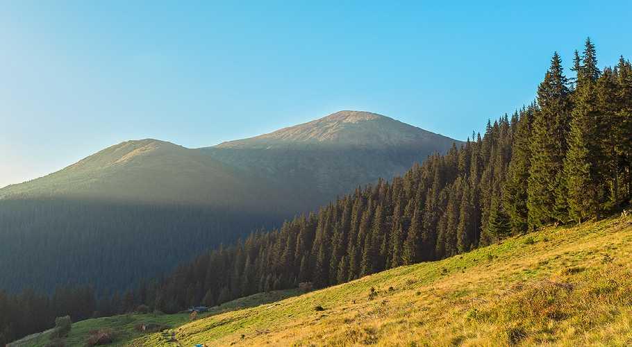 полонына Гропа с видом на Говерлу. Фото Игорь Гвоздецкий