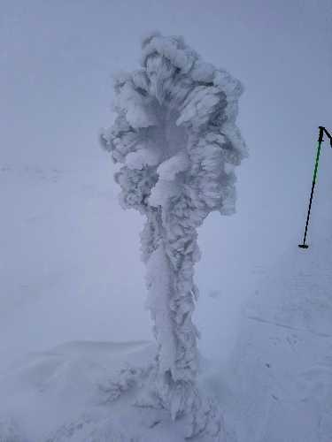 Маркировочный столбик после снегопада с ветром. Фото Евгений Чизмар