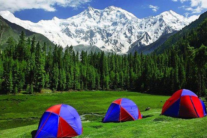 Национальный парк Фейри Медоуз.На заднем плане - восьмитысячник Нангапарбат. Пакистан